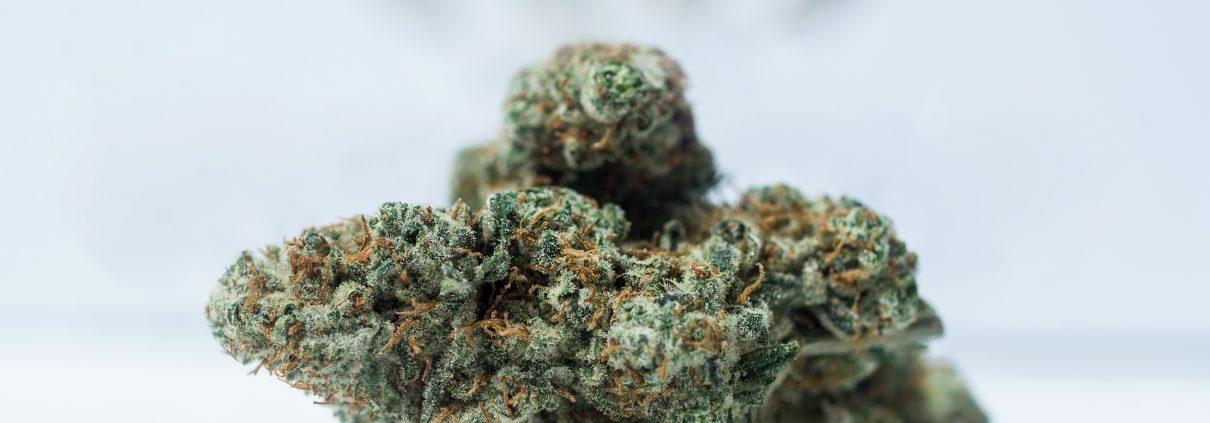 Cannabis-Treatment for PTSD