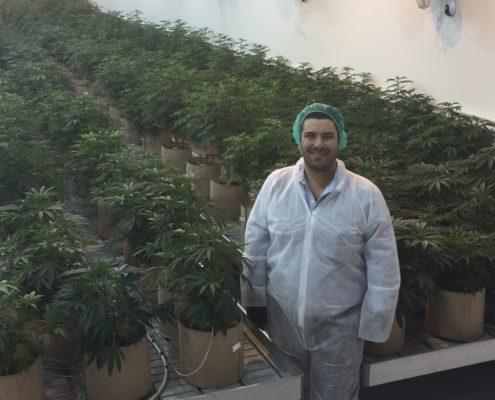 Las Vegas Medical Marijuana Farm