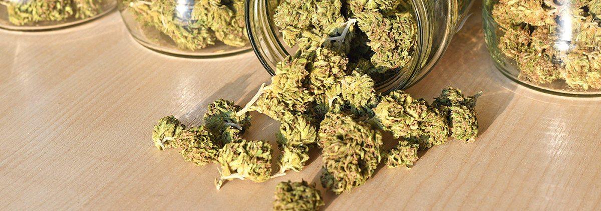 Store Cannabis