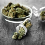 Top 5 Gift Ideas for a Cannabis Enthusiast