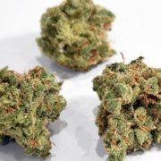 marijuana GETTY IMAGES 1524753660521 5412333 ver1.0 640 360