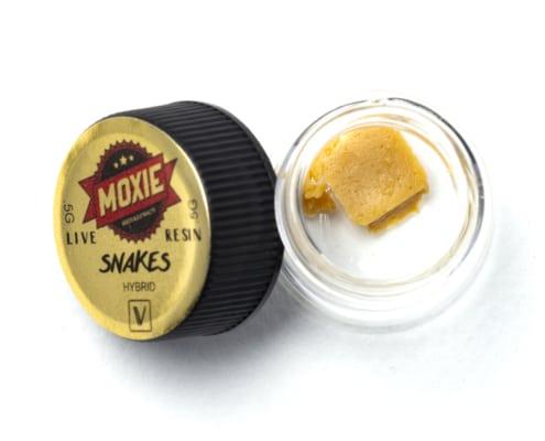 Moxie Snakes