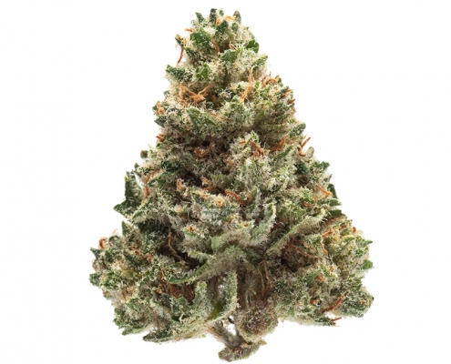 Green Way Marijuana - Red Headed Stranger (1)