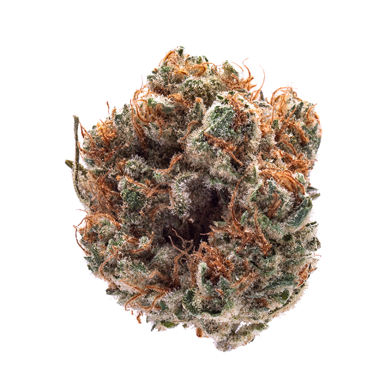 Desert Grown Farms - Bio-Jesus