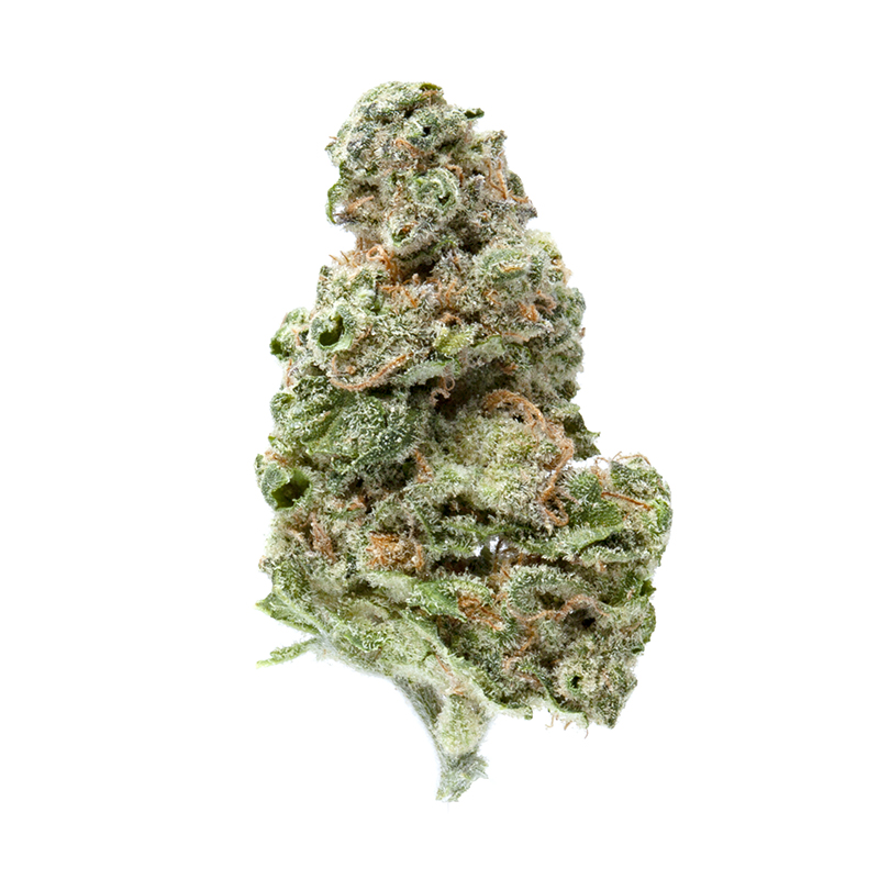 Greenway Medical - UK Cheese