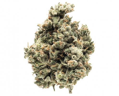 Mother Herb Acapulco Gold