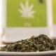 cannabis 101 christmas treats
