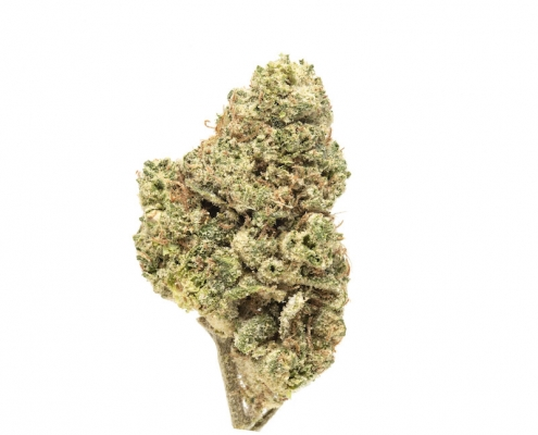 CultivationsLabs SpaceCake