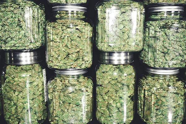 Wellness Wednesday Recap How To Properly Store Your Cannabis 2