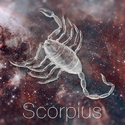 Zodiac Sign Scorpius