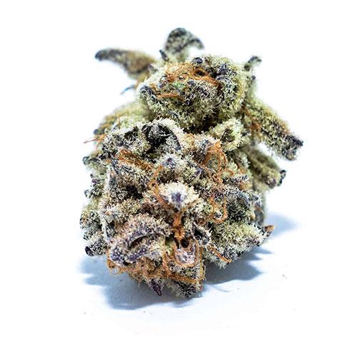 3 purple punch 1