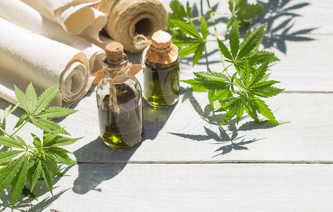 The Many Differences Between Hemp and Marijuana Plants